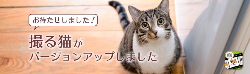 「撮る猫」がバージョンアップしました!
