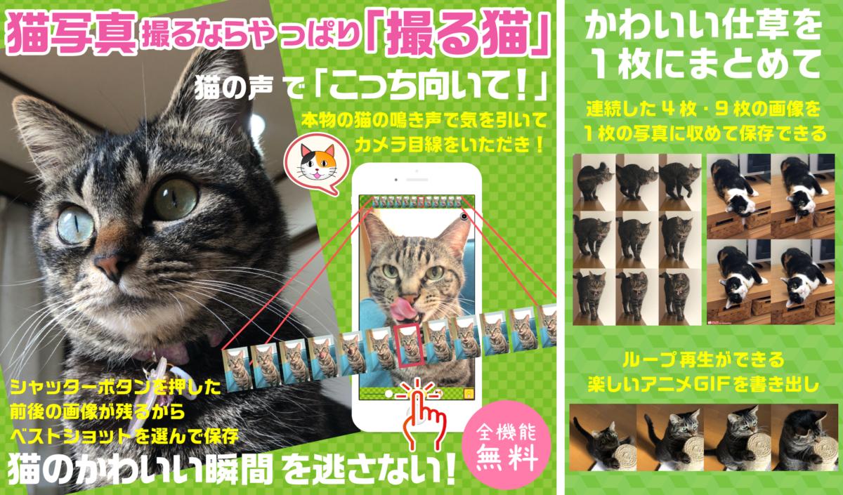 【プレスリリース】アニメGIFも簡単に作れる!猫写真専用カメラアプリ「撮る猫」の新バージョン3.3が6月19日リリース!
